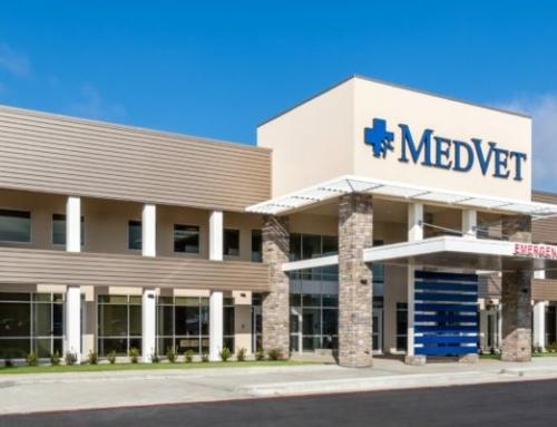 MedVet Dallas- NOW OPEN