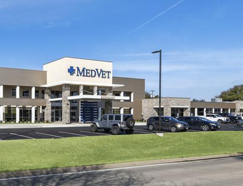 Dallas Veterinary Specialty & Emergency Hospital