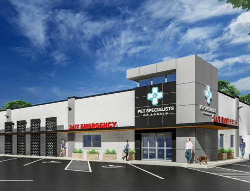 Central Austin Veterinary Specialty and Emergency Hospital