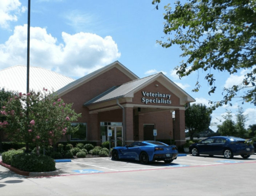 Sugar Land Veterinary Specialists and 24 Hour Emergency Care